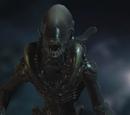 Lurker Xenomorph