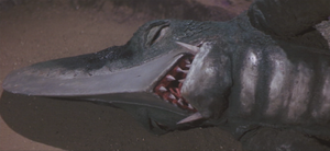Guiron's death.