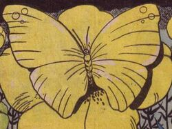 Giant-butterfly-mars