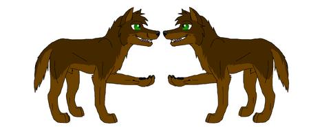 Trash sam wolf