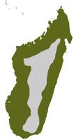 Madagascan-Harrier-Hawk-dist-map