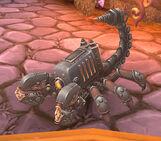 Pet hellion scorpion 01