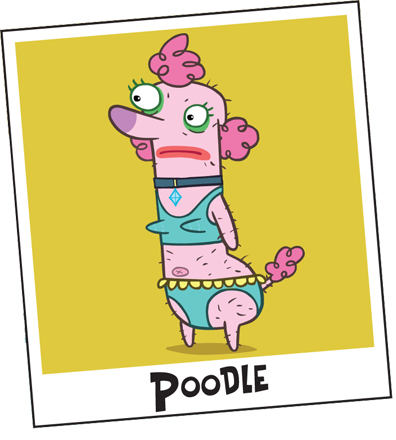 File:Poodle .jpg