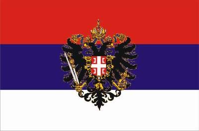 File:SAO Vojvodina - zastava.jpg