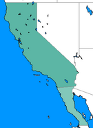 NotLAH California 1999