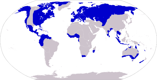 French allies NAV