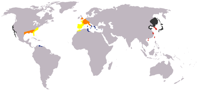 File:Make your nation map startingmap.png
