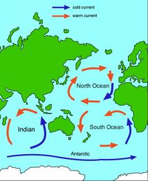 Map-of-ocean-gyres-0