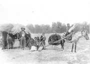 Cheyenne Travelers