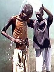 Zimbabwe Dissidents Starvation
