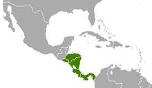 Panama (YS-1936)
