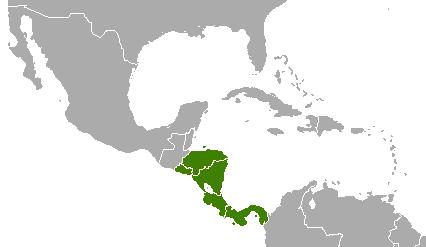File:Panama (YS-1936).png