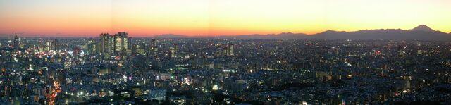File:JPN Tokyo Pan 01 (VegWorld).jpg