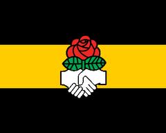 DanubianPeoplesPartyFlag