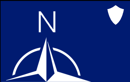 File:NDS FLag.png