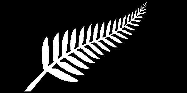 File:NZ fern flag.jpg