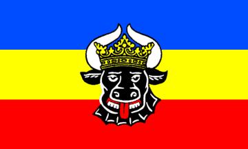 File:Mecklenberg Flag.png