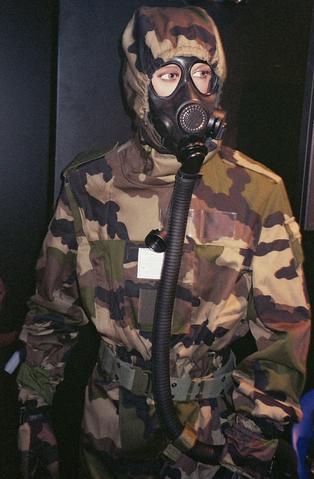File:Zombies2010 GasmaskFrance.png