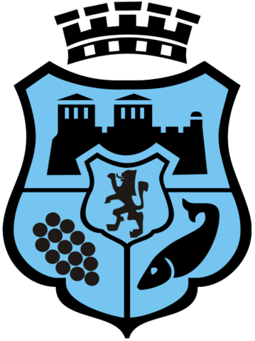 File:Coat of arms of Vidin.png