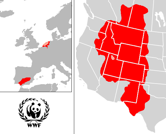File:WWF PROJECTS2.png