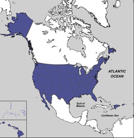 File:US States.png
