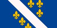 Bosnia (Revolution!)