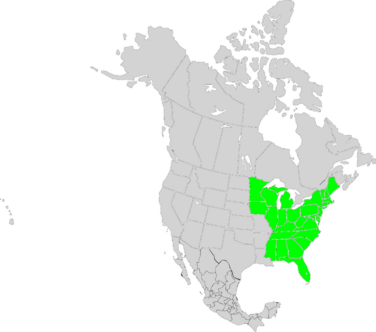 File:United States (A Different History).PNG