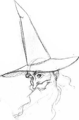 File:Twinkling Wizard.jpg