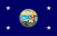 Flag 865