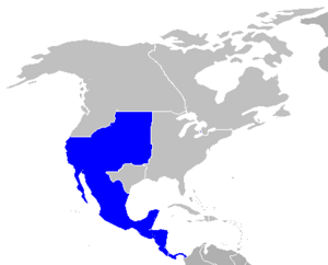 Northamerica map highlight mexico