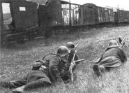Romanian-infantry-03