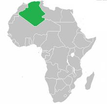 QI Algeria