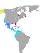 Colonisationmapg