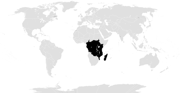 File:Example New Afrika.png