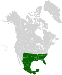 AMP Map of the Confederate States of America VII