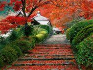 Garden-staircase-kyoto