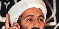 Osama bin Laden (President McCain)