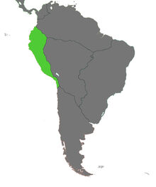 Blank Map Inca VINW WITH FCC 2