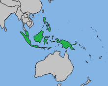 Nusantara (Mughal Glory)
