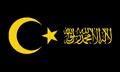 SV-HajjarFlag