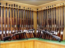 British gun store