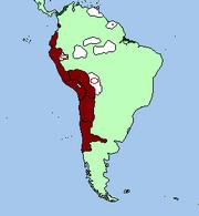 Inca, Ico, Pisac, expansion