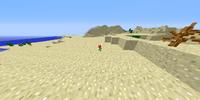 Desert Nova