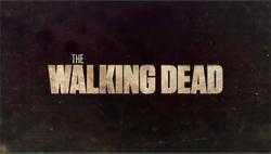 File-The Walking Dead 2010 Intertitle