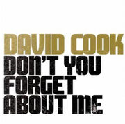 David-Cook-Dont-You