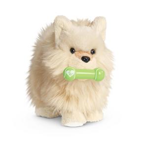 PomeranianPuppy