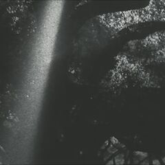 Coven Opening Titles