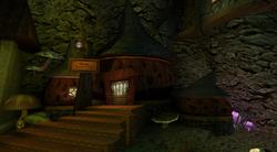Rana Mushroom Shop