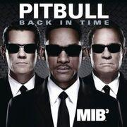 Pitbull Back In Time cover