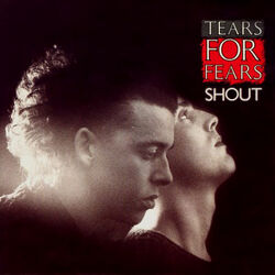 Tears For Fears Shout cover